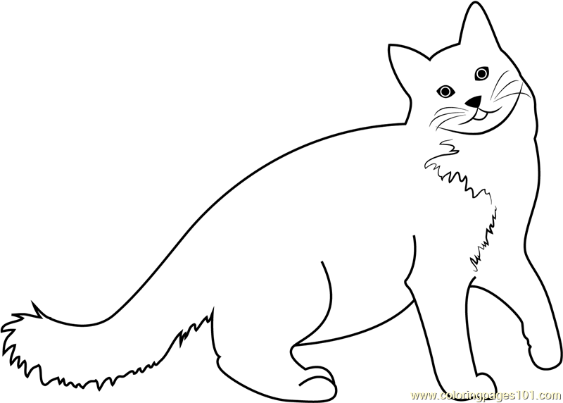 A Very Happy Cat Coloring Page