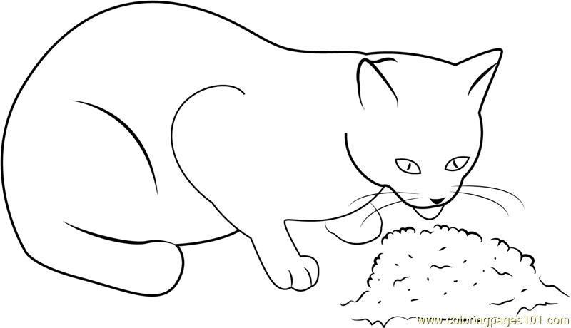 Cat Eating Food Coloring Page Free Cat Coloring Pages
