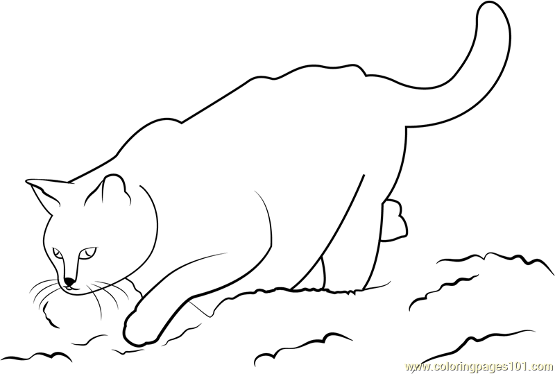 Cat Looking Down Coloring Page