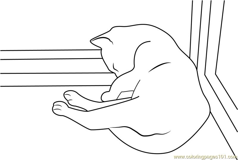 Cat Sleeping At The Corner Of Window Coloring Page