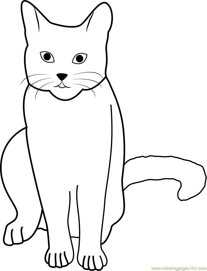 Cat Stock by Tigg Coloring Page