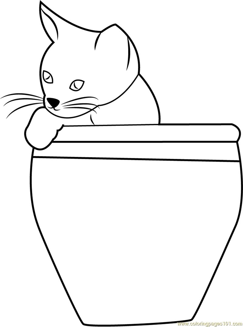 Cat in a Pot Coloring Page Free