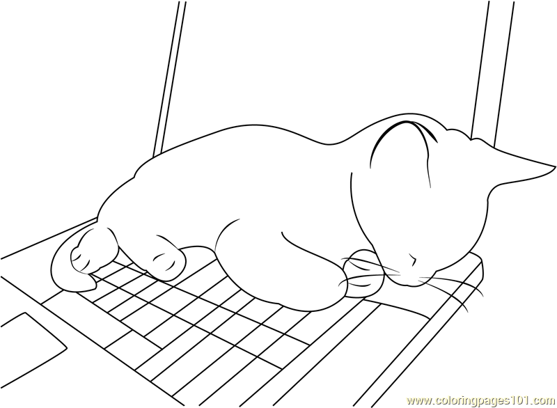 Cute Cat Sleeping on PC Coloring