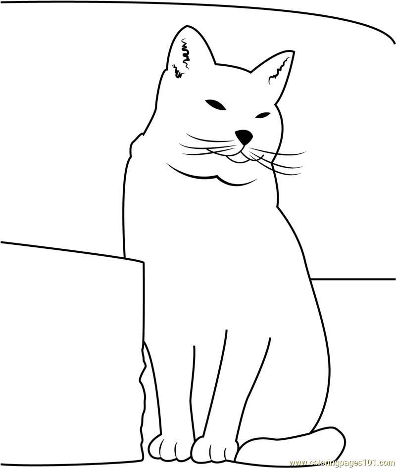 Fat Cat Sitting Near Sofa Coloring Page