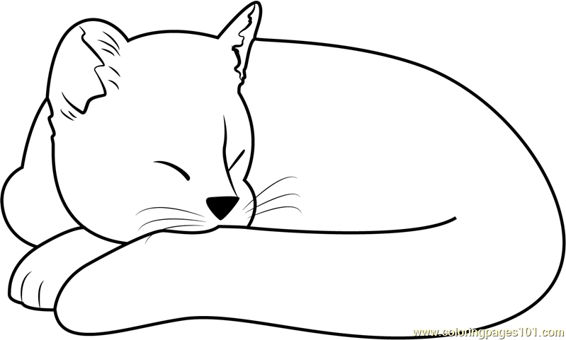 Ginger Cat Sleeping Coloring Page Free Cat Coloring Pages