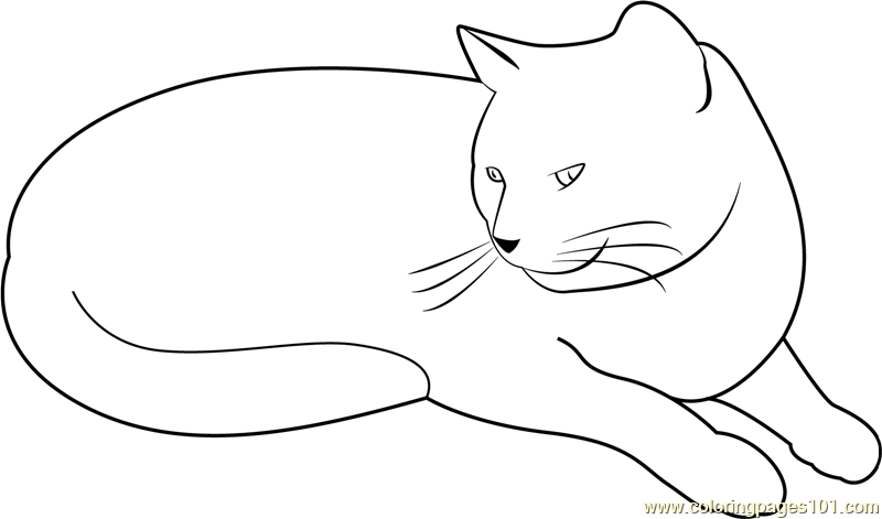 My Cat is Bored Coloring Page