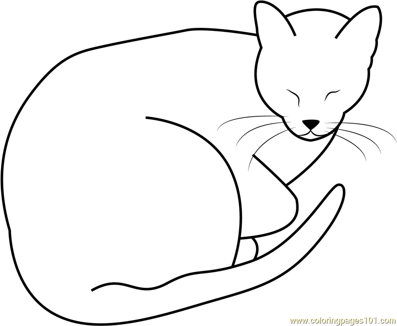 Sleeping Fat Cat by Jedijaruto Coloring Page - Free Cat ...