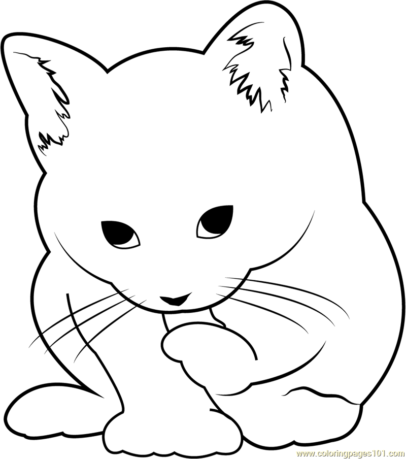 Small Cute Cat Coloring Page