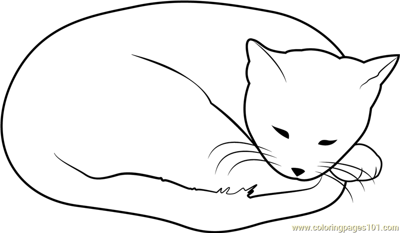 cat dreaming coloring pages - photo#24