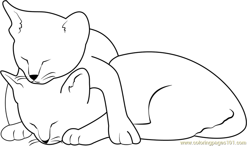 Two Cats Sleeping Coloring Page