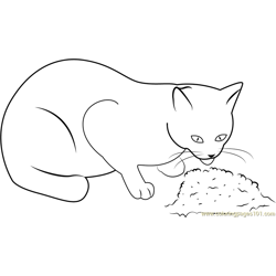 Cat Eating Food Free Coloring Page for Kids