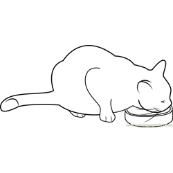 Cat Eating her Food Free Coloring Page for Kids