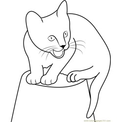 Cat Sitting Up on a Pot Free Coloring Page for Kids