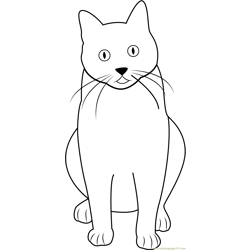 Cat Sitting and Looking Up Free Coloring Page for Kids