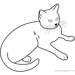 Cat Sitting and Looking Free Coloring Page for Kids