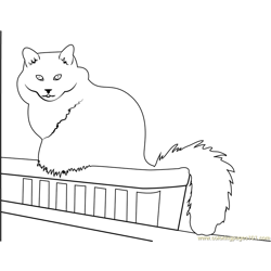 Cat Sitting in Balcony Free Coloring Page for Kids