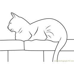 Cat Sitting on Wall Free Coloring Page for Kids