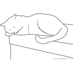 Cat Sleeping on Table Free Coloring Page for Kids