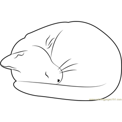 Cat Sleeping Free Coloring Page for Kids