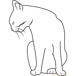 Cat Staring Down Free Coloring Page for Kids