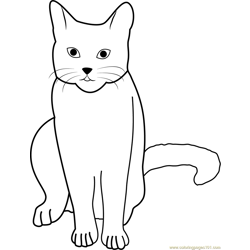 Cat Stock by Tigg Free Coloring Page for Kids