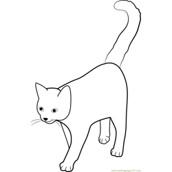 Cat Tail High Free Coloring Page for Kids
