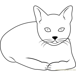 Cat Watching Forward Free Coloring Page for Kids