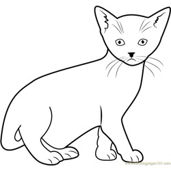 Cat looking at You Free Coloring Page for Kids