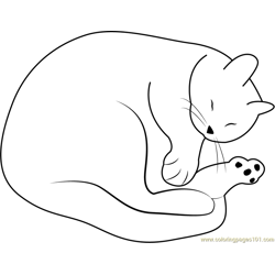 Cute Cat Sleeping by Drawade Free Coloring Page for Kids
