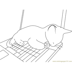 Cute Cat Sleeping on PC Free Coloring Page for Kids
