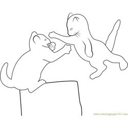 Fighting Kitten Free Coloring Page for Kids