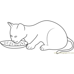 Kitten Eating her Food Free Coloring Page for Kids