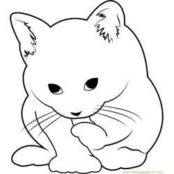 Small Cute Cat Free Coloring Page for Kids