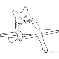 Square Cat Habitat Free Coloring Page for Kids