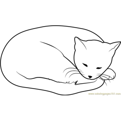 Sweet Dreams Cat Free Coloring Page for Kids