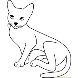 White Grey Cat Free Coloring Page for Kids