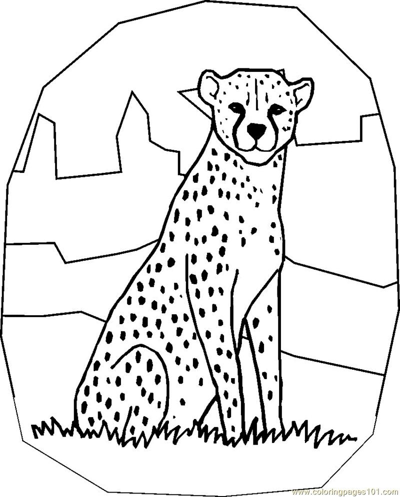 Coloring pages for cheetah - Cheetah Coloring Page