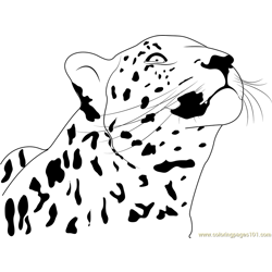 Cheetah Looking Up Free Coloring Page for Kids