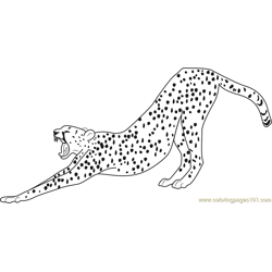 Stretching Cheetah Free Coloring Page for Kids
