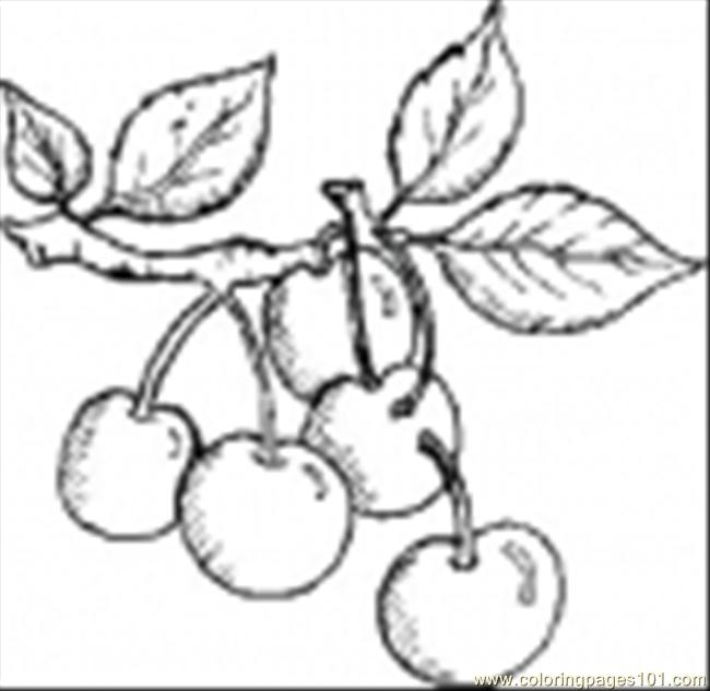 Cherries6 Coloring Page