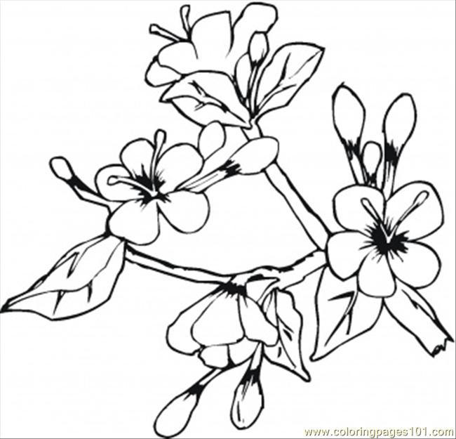 Flowers In May Coloring Page Coloring Page