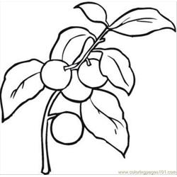 Cherry 2 Coloring Page