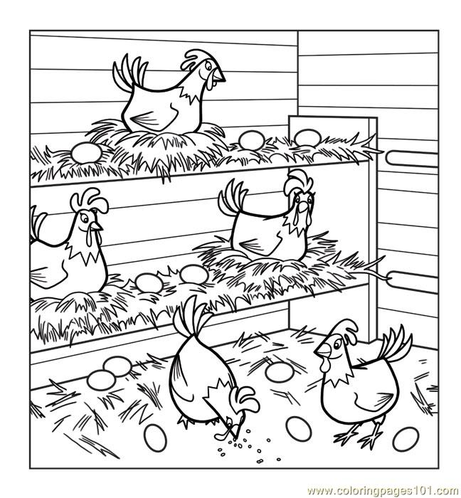 Chickens coloring page free chicks hens and roosters for Printable chicken coloring pages