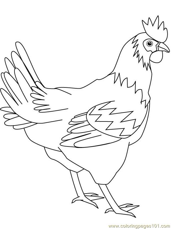 Fighter Hen Coloring Page Free Chicks Hens And Roosters