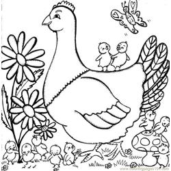 Mrs Hen Free Coloring Page for Kids