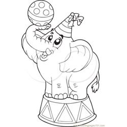 A Circus Elephant  Free Coloring Page for Kids