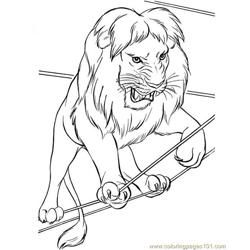 A very angry lion from the circus Free Coloring Page for Kids