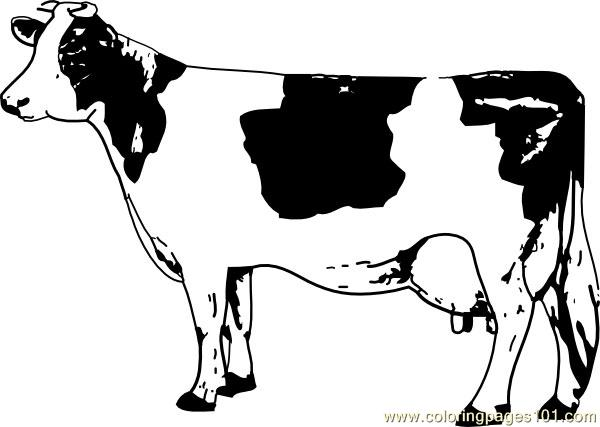 Cow 2 Coloring Page Free Cow Coloring Pages Coloringpages101 Com Cow Color
