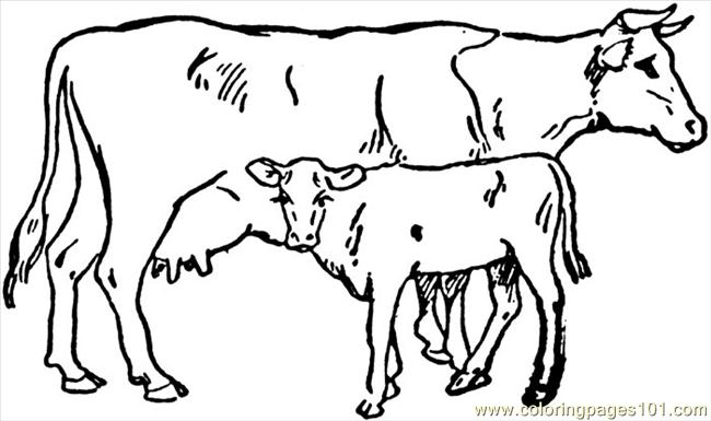 Cow 4 printable coloring page for kids and adults