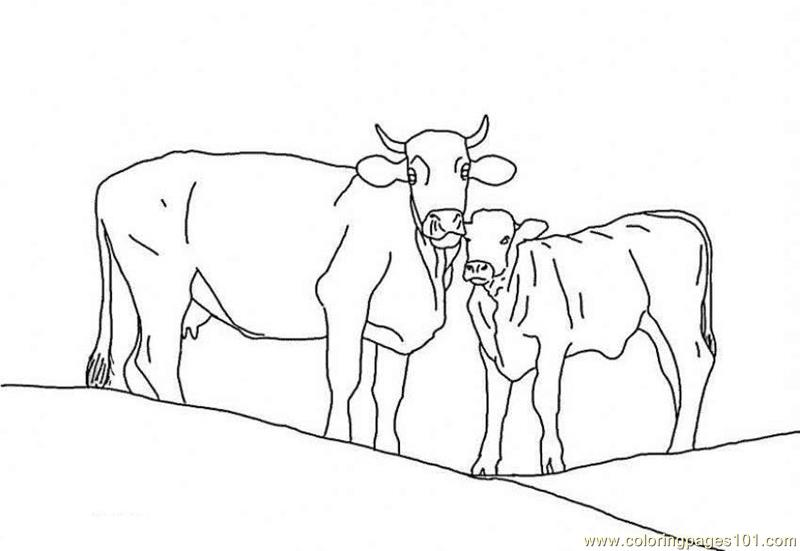Calf with mother cow Coloring Page - Free Cow Coloring ...